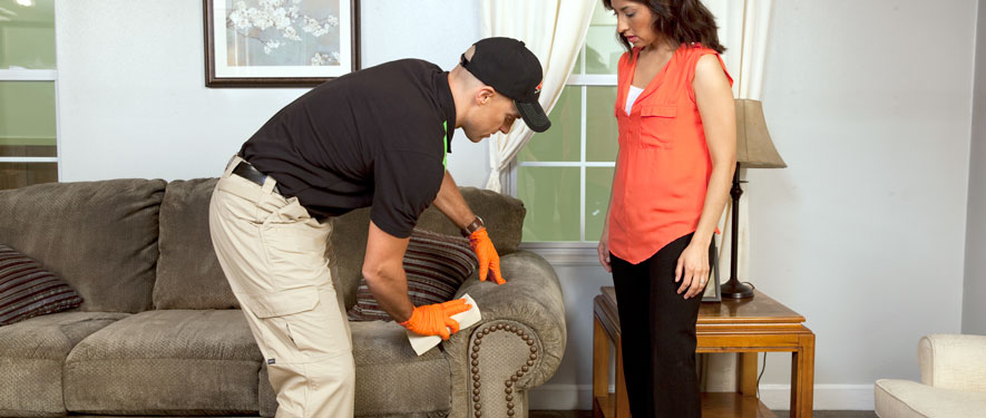 Kirkland, WA carpet upholstery cleaning