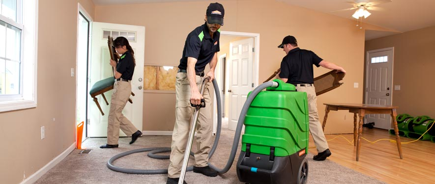 Kirkland, WA cleaning services